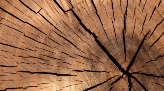 Roven Parquet | Valori aziendali